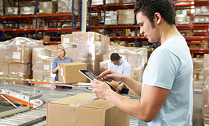 Pest Control Service For Warehouse & Manufacturing | Fresno CA | Visalia CA