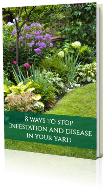 8-Ways-to-Stop-Infestation-and-Disease-in-Your-Yard-ebook.png