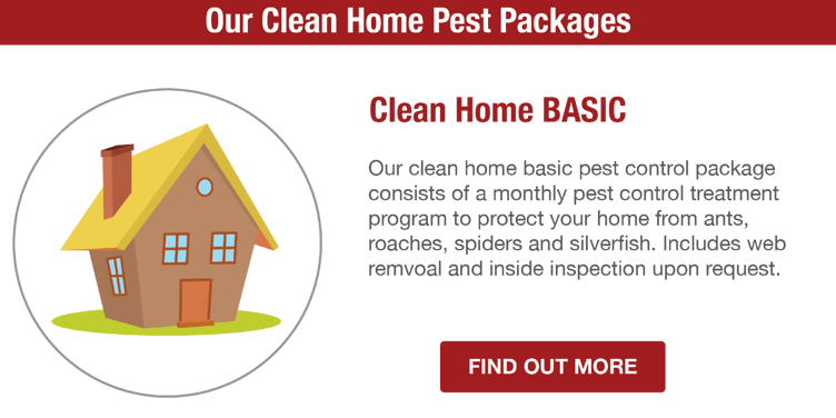 San Joaquin Pest Control | Basic Pest Pricing Package