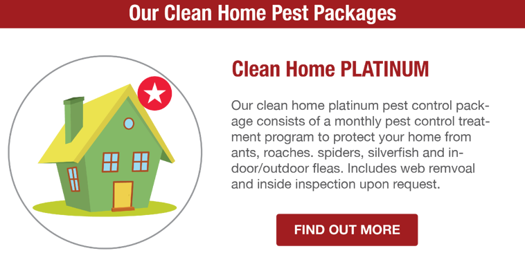 San Joaquin Pest Control | Platinum Pest Package