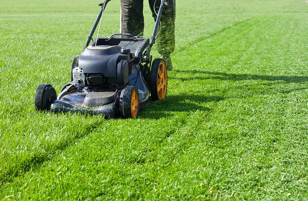 4 Steps to Prep Your Lawn for Fall | The Experienced Gardener