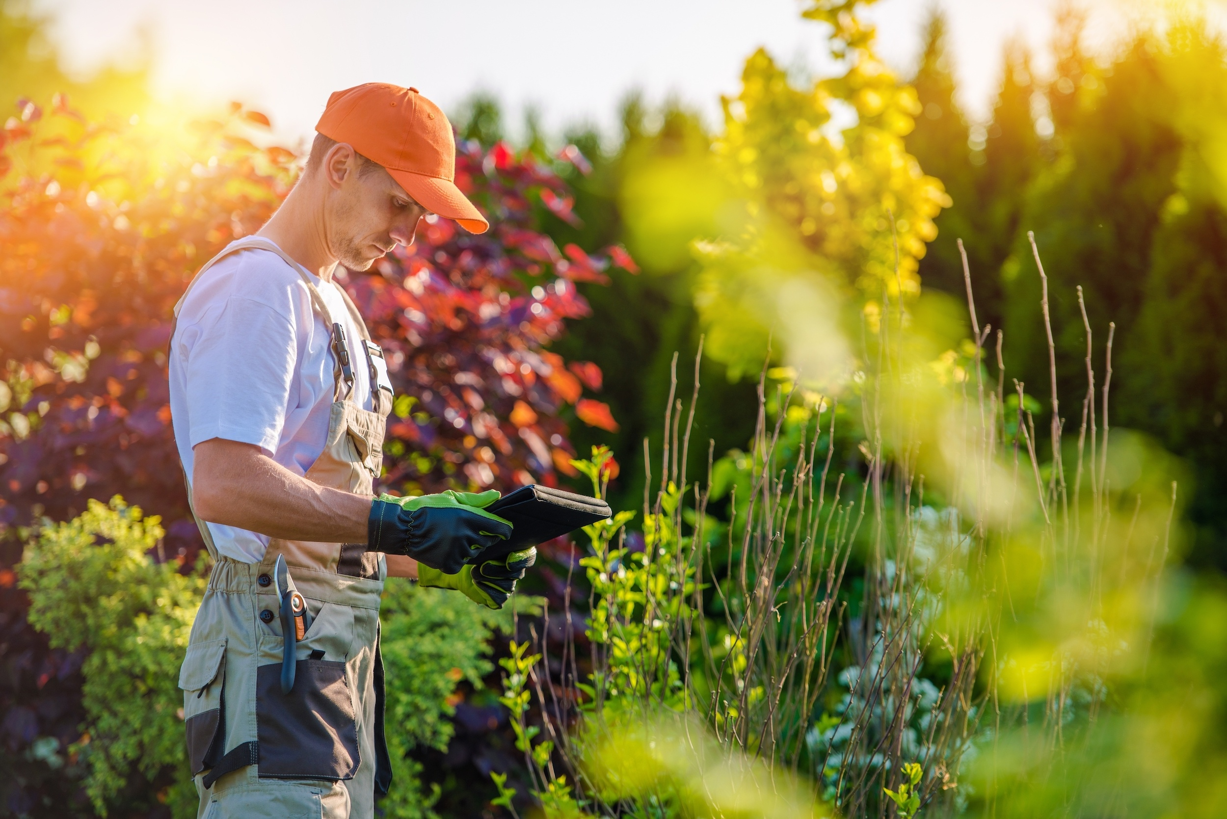 7 Benefits to Hiring a Professional Landscaper | The Experienced Gardener