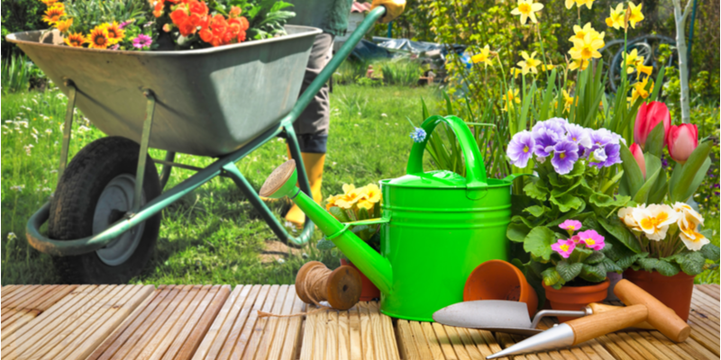 Equipment You Need to Properly Care for Your Yard | The Experienced Gardener