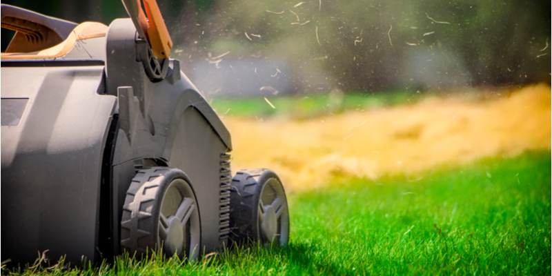 Lawn Care Duties to Keep on Your List in September