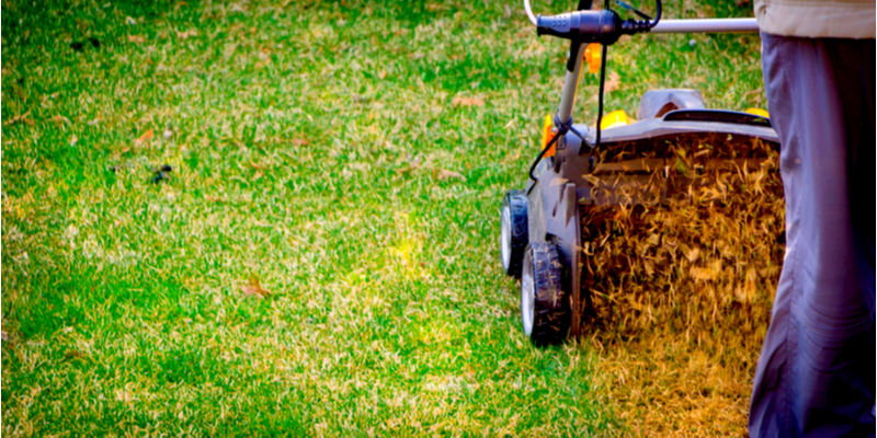 Reasons to Aerate Your Lawn in the Fall | The Experienced Gardener