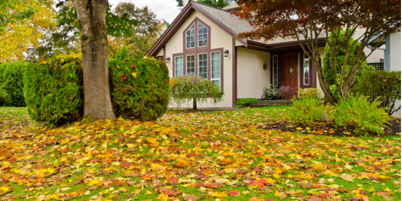 Three Lawn Maintenance Tasks You Shouldn't Ignore in the Fall