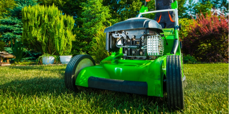 Three Reasons to Invest in Professional Lawn Care Services for Your Business