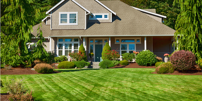 Ways Your Yard Will Benefit from Professional Lawn Care Services