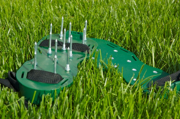 An Inside Look At What Lawn Aeration Is | The Experienced Gardener