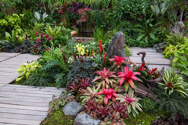 How to Choose Plants That Will Last | The Experienced Gardener