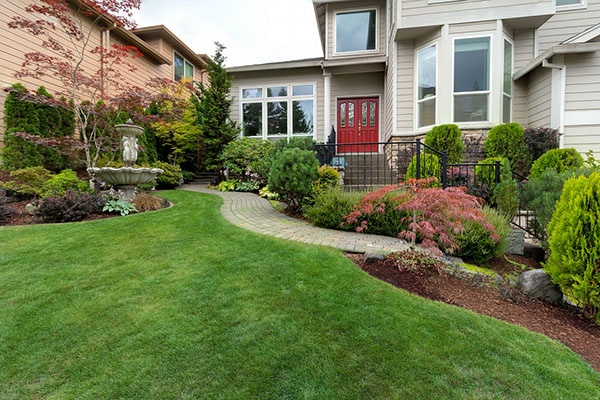 How Do I Know Which Plants Will Grow Best in My Yard? | The Experienced Gardener