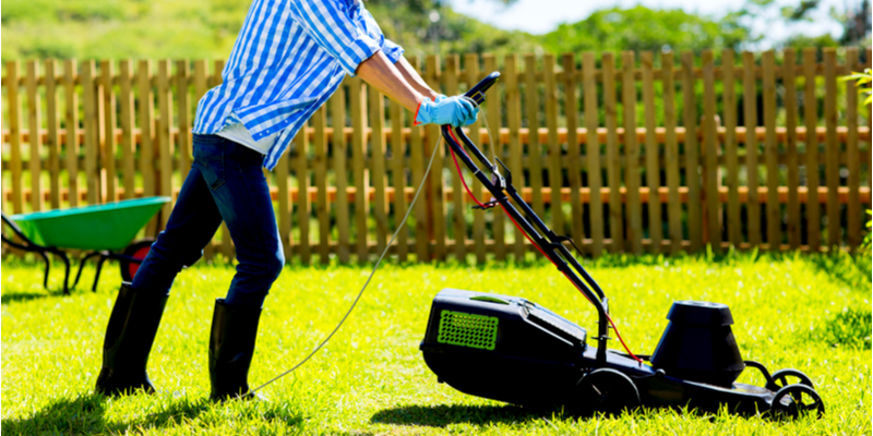 Habits That Will Keep Your Yard Looking Good | The Experienced Gardener