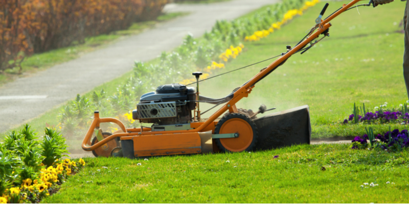 How Much Time Does Proper Lawn care Require? | The Experienced Gardener