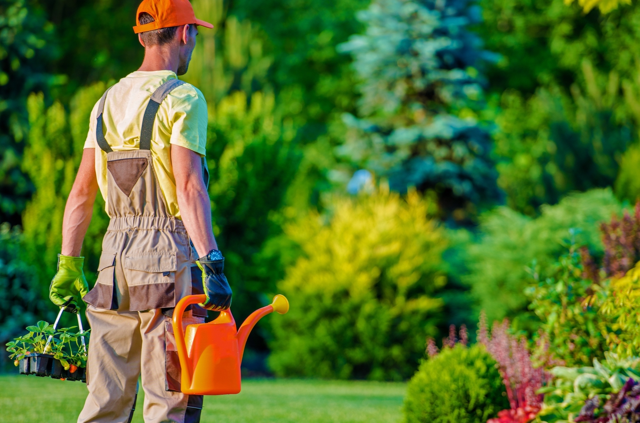 How To Hire The Right Landscaper | The Experienced Gardener