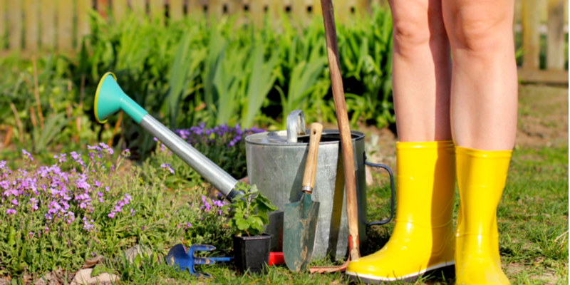 Prep Your Flowerbeds This Fall for the Coming Spring | The Experienced Gardener
