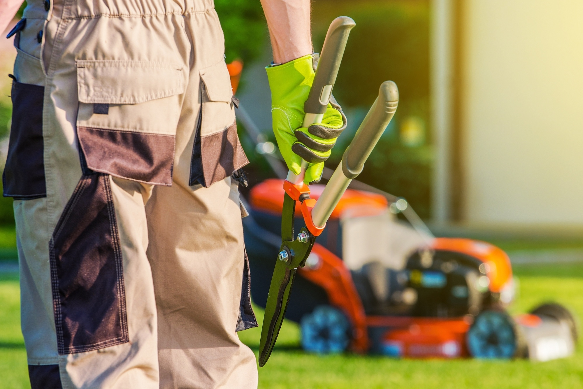 Reasons to Use a Professional Landscaper for Your Visalia Business | The Experienced Gardener
