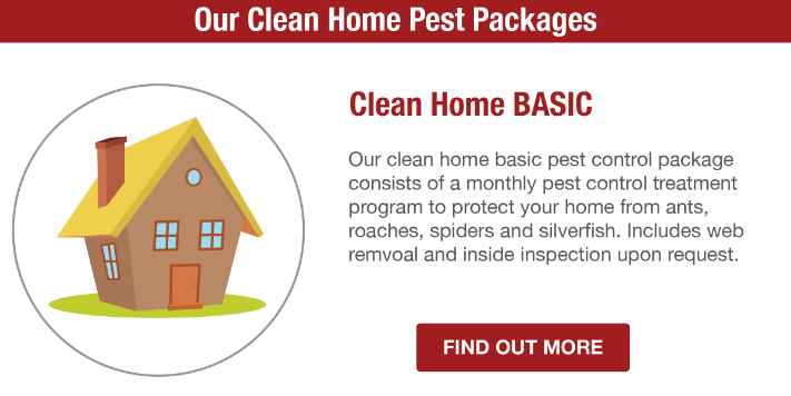 San Joaquin Pest Control Clean Home Basic Plan