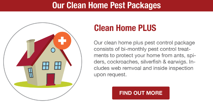 San Joaquin Pest Control Clean Home Plus Plan