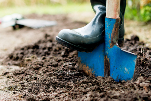 Simple Tips For New Gardeners | The Experienced Gardener