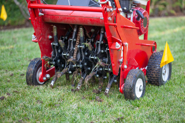 Take These Five Lawncare Tasks off Your Plate this Spring | The Experienced Gardener