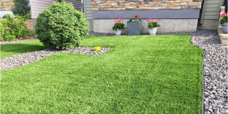 These Lawn Tasks are Essential if you Want a Healthy Yard | The Experienced Gardener