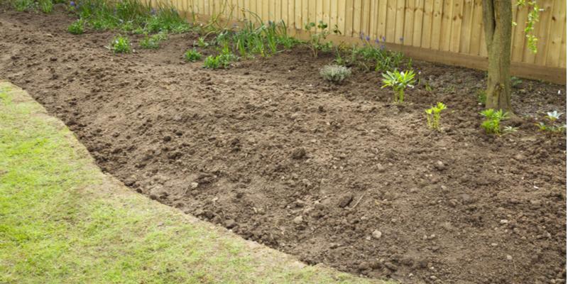 Three Tips to Get Your Flowerbeds Ready for Spring | The Experienced Gardener