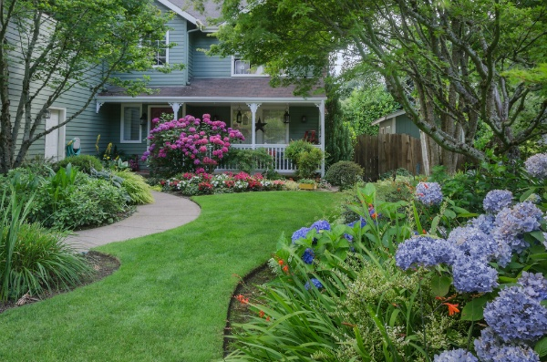 Four Main Causes for Infestation Or Disease In Your Yard | The Experienced Gardener