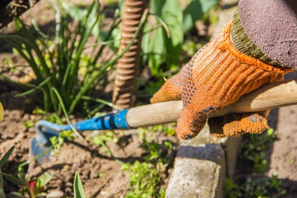 Four Steps to an Effective Weed Control Plan | The Experienced Gardener