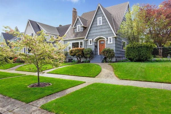 Selecting Trees to Plant in Your Front Yard   The Experienced Gardener