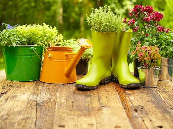Taking Care of Your Garden: Five Things to Know | The Experienced Gardener
