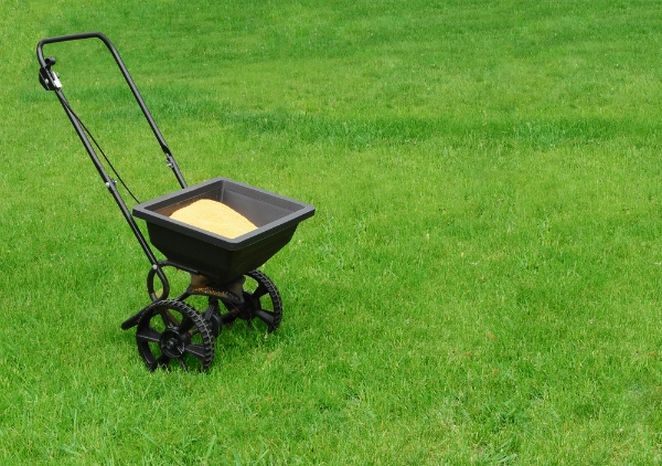 What Do Homeowners Need to Know Before Fertilizing Their Lawn? | The Experienced Gardener
