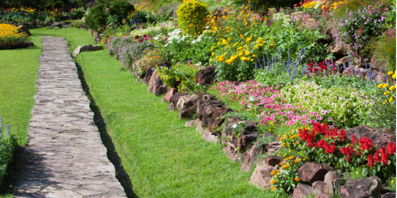 What are the Biggest Threats to a Healthy Landscape? | The Experienced Gardener