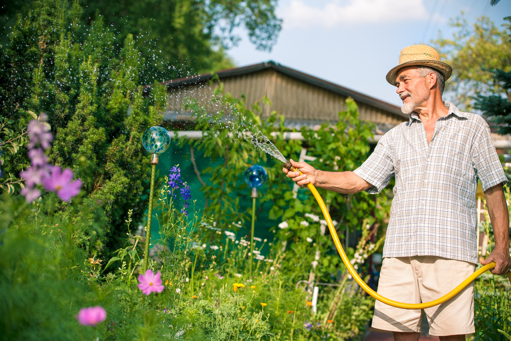 Why Planting And Transplanting In Fall Is Best? | The Experienced Gardener-1