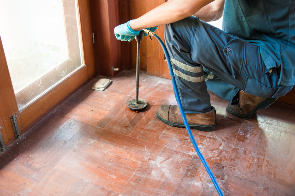 Why Skipping Monthly Commercial Pest Control Is A Mistake | San Joaquin Pest Control