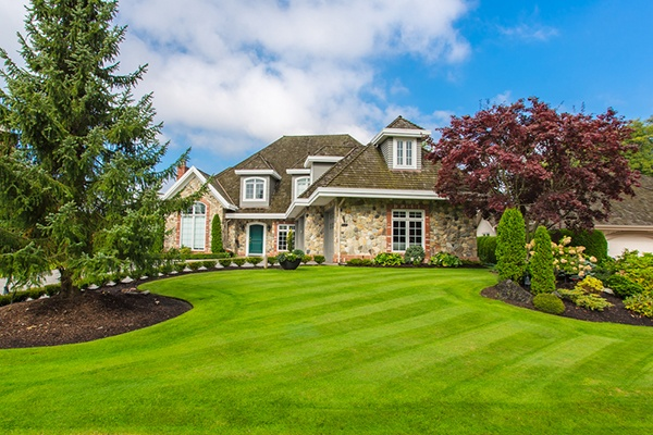 Dos And Don'ts Of Spring Lawn Care | The Experienced Gardener
