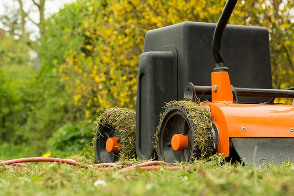 Is The Summer a Good Time for Lawn Aeration? | The Experienced Gardener