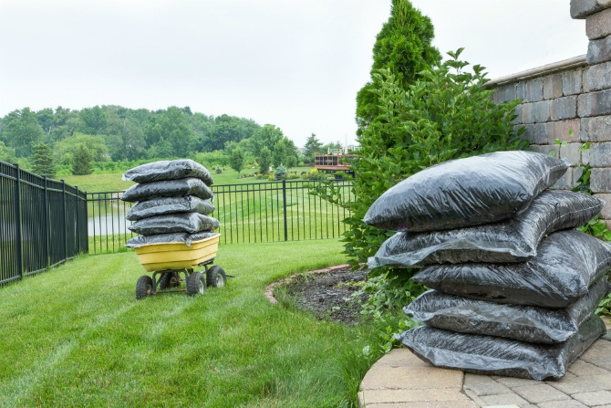 Handling Lawn Care Yourself vs. Hiring a Professional | The Experienced Gardener
