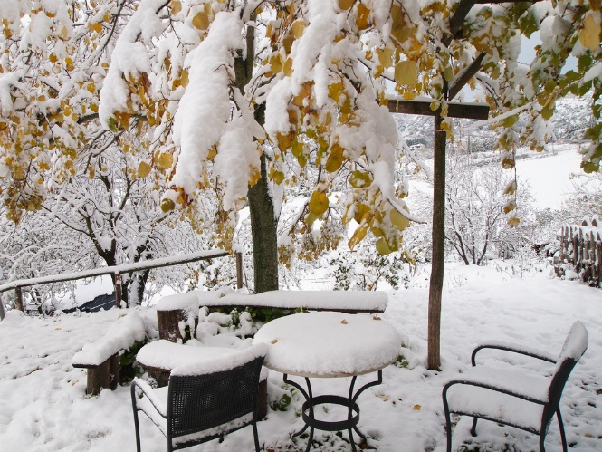 How to Prepare Your Garden for Winter | The Experienced Gardener