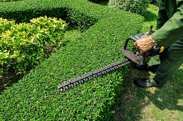 Why Is It Important For Property Owners To Hire A Landscaping Company? | The Experienced Gardener