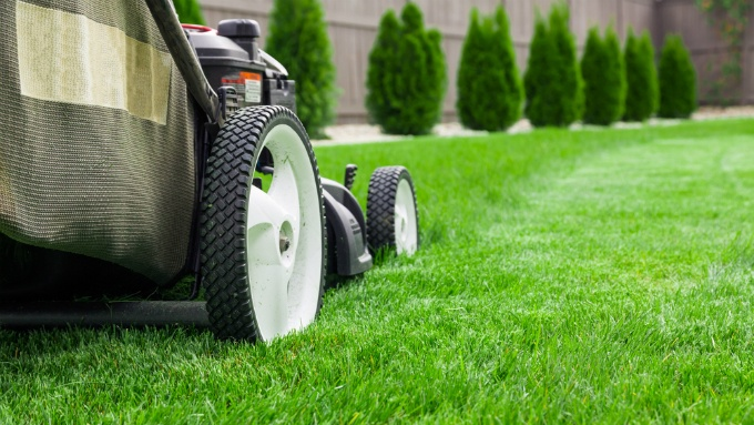 Lawn Care: Three Common Mistakes You Should Try to Avoid | The Experienced Gardener