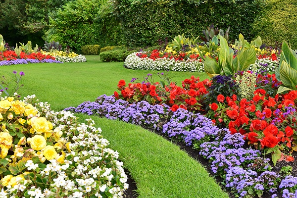 How Can A Landscaper Prep My Yard For Spring? | The Experienced Gardener