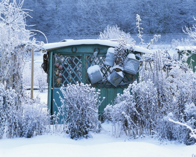 Prepping Your Yard for Winter | The Experienced Gardener