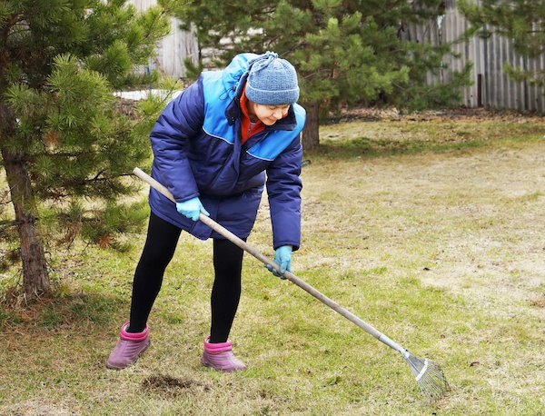How to Care For Your Garden During The Cold Seasons | The Experienced Gardener