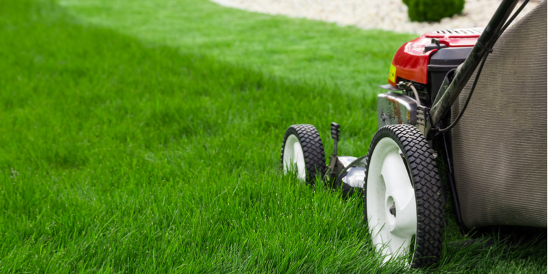 Lawn Care Services | Visalia, CA