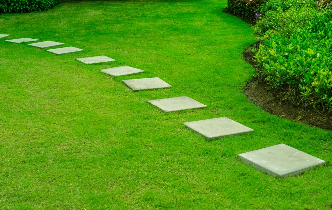 Three Reasons Property Owners Need Commercial Lawn Care Services | The Experienced Gardener