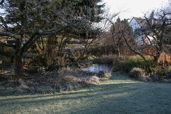 Three Ways to Protect Your Flower Garden in the Winter | The Experienced Gardener
