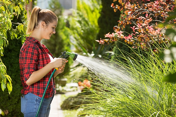 Most Important Gardening Tips For The Hotter Months | The Experienced Gardener