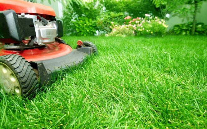 What Are the Benefits of Lawn Aeration? | The Experienced Gardener